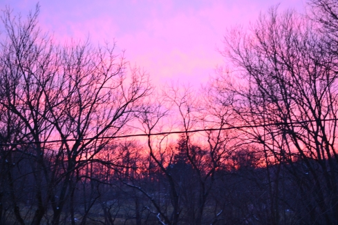 This picture does not even begin to do justice to the GORGEOUS sunset we watched last week.