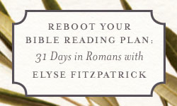Reboot Your Bible Reading Plan