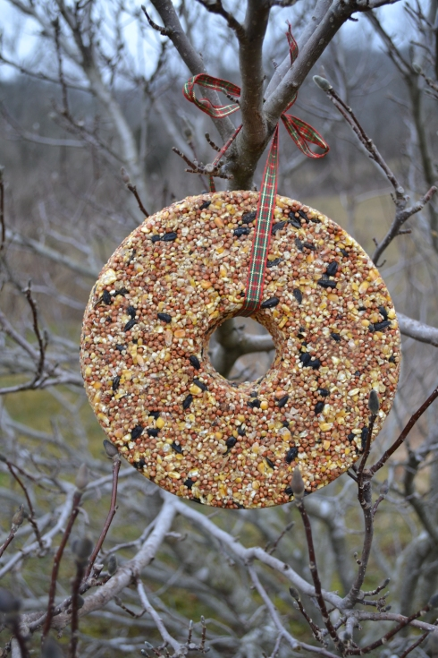 This past week Eli and I made a Birdseed Wreath.