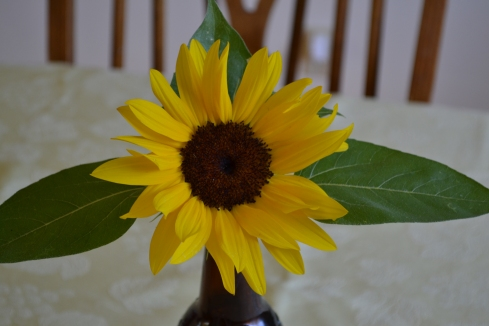 I grew this sunflower right outside our front porch.